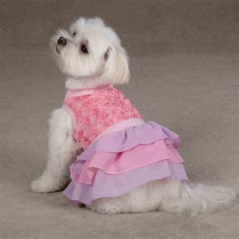 cotton puppy cotton dress pink baxterboo