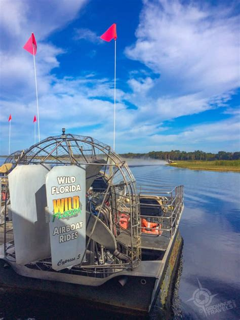 airboat rides and zoo airboat gator tours wild florida