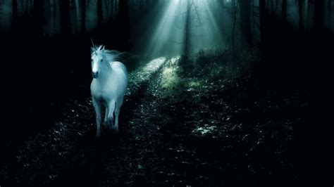 wallpaper hd unicorn unicorn wallpapers wallpaper cave