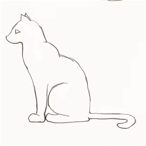 Outline Drawing Cat Laying Vitruvian Outline by Cat Outline Drawing Pencil And In Color Cat Outline Drawing
