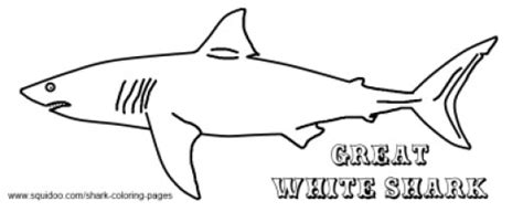 goblin shark coloring page shark coloring pages