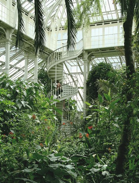 1970s Interior Design by File Kew Palm House Jpg Wikimedia Commons
