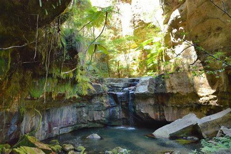 nelson water garden