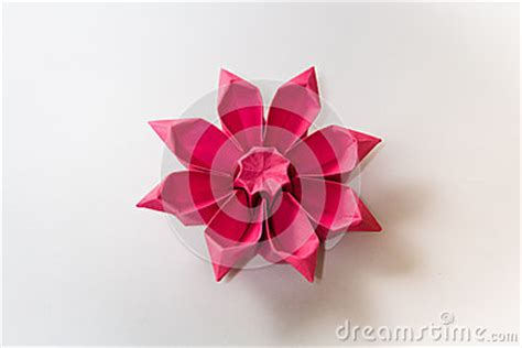 Origami Gerbera - origami gerbera flower stock photo image 49930715