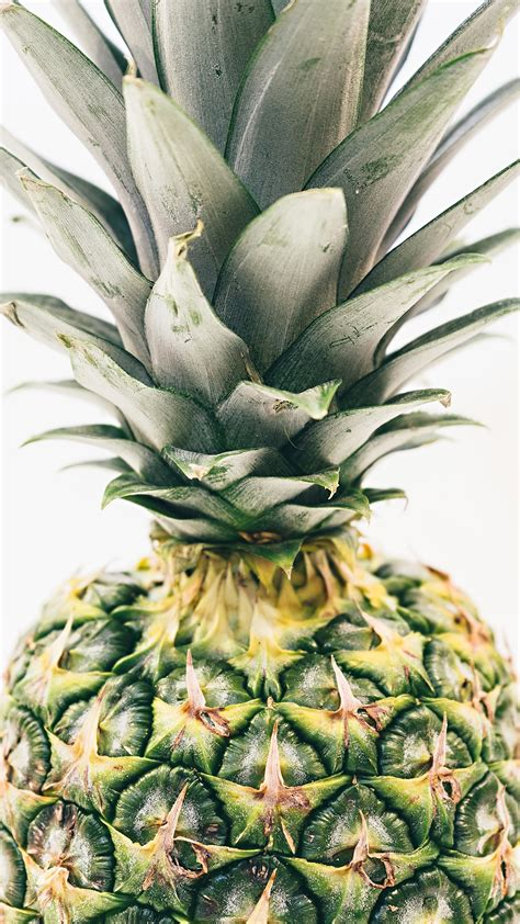 pineapple wallpaper pineapple background 183 download free stunning hd wallpapers for desktop mobile laptop in any
