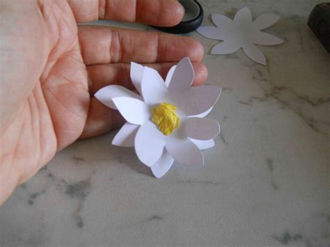 giorgine fiori fiore di cartoncino bricolage ricette