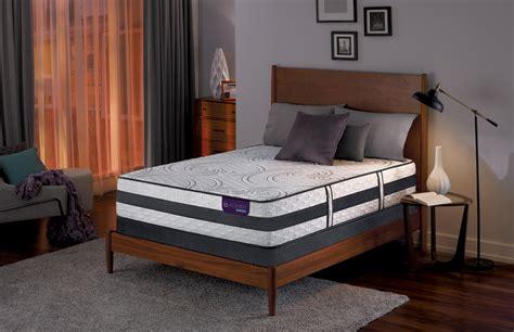 serta davis mattress sealy florenza garden firm mattress