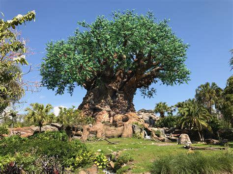 disney tree file disney s tree of jpg wikimedia commons