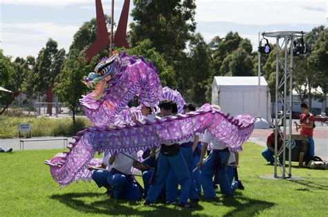 new year melbourne showgrounds lunar new year tet festival 2018 melbourne