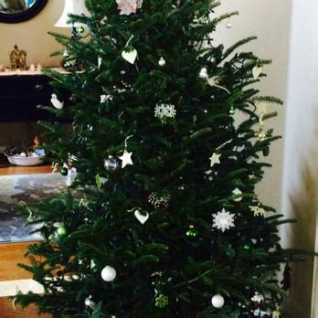 christmas tree delivery dallas blooming colors nursery 15 reviews landscaping 2221 ira e woods ave grapevine tx united