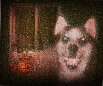 Imagenes De Smiledog Jpg | smile dog y smile jpg en el foro encuestas chorras 2013