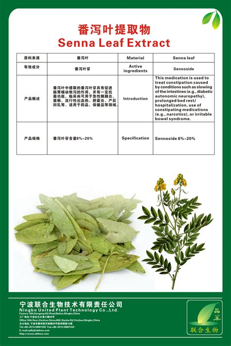 Stool Softener In Pakistan by Senna Leaf Extract From Ningbo United Plant Technology Co