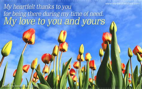 Thank you Greetings ~ Thank you e card   free greeting