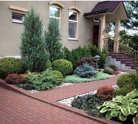 beautiful front yards  backyard evergreen garden