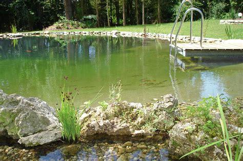 Schwimmteich Mit Fischen by Pool Schwimmteich Oder Naturpool Der Gartenbaumeister