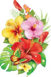 tropical flowers vector graphics flowers graphics