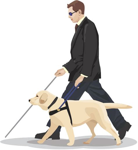 assistance dogs international assistance week is coming soon pet peeps best in home