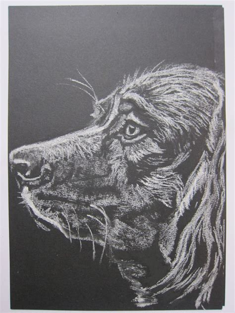 Black And White Chalk Drawings by White Chalk Drawings On Paper Www Pixshark Images
