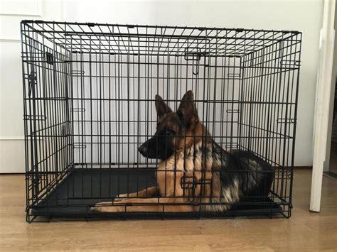 crate german shepherd puppy new crate necessary german shepherd forums