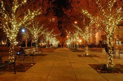 5800 n clark christmas trees chicago hinsdale tree lighting lighting ideas