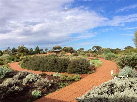 Arid Lands Botanic Gardens Amazing Botanic Gardens I Could Take Photographs Here All Day Picture Of Australian Arid