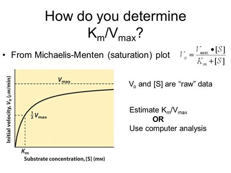 how to calculate vmax and km from a lineweaver and burk plot youtube michaelis menten kinetics ppt video online download