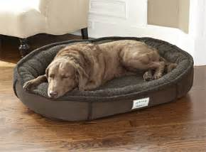 tempur pedic dog beds press release orvis introduces new tempur pedic 174 premium dog bed