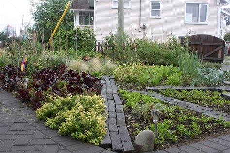 tricks    growing  front yard vegetable