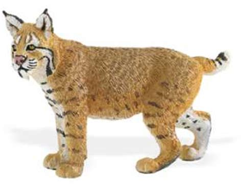 bobcat toy figurine miniature replica  anwocom animal world