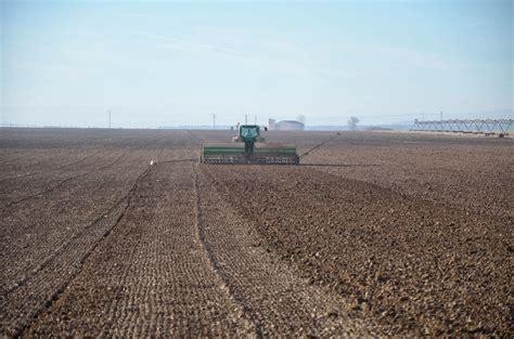 trigo estero trigo estero dos sembradoras siamesas farm
