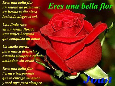 imagenes rosas con poemas rosas con poemas de amor para celular frases de amor