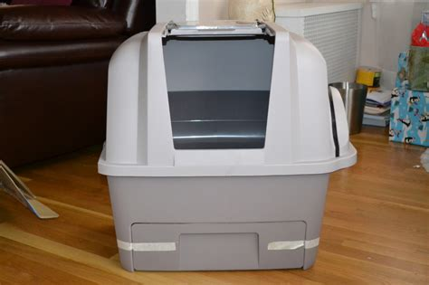 auto litter box litter box woes hagen smartsift has a solution a time