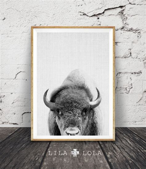 home decor buffalo 28 images buffalo print bison 25 best ideas about animal photography on pinterest