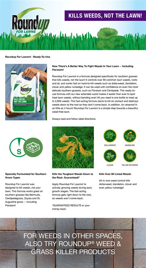 roundup for lawns roundup roundup for lawns 4 ready to use wand 1 gal