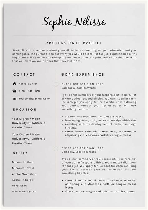 Resume Design Ideas 25 Best Ideas About Professional Resume Template On