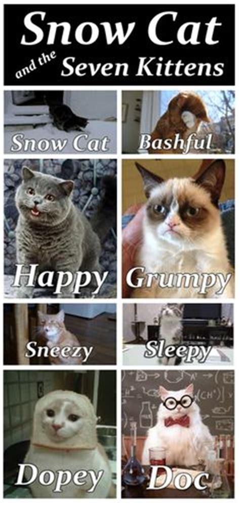 images  cat quotes  pinterest grumpy cat grumpy cat disney  cat quotes