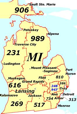 Area Code 313 Lookup Michigan The World S Most Comprehensive Disorder Referral And Information Website