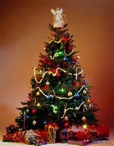 decoraciones y comidas para esta navidad taringa