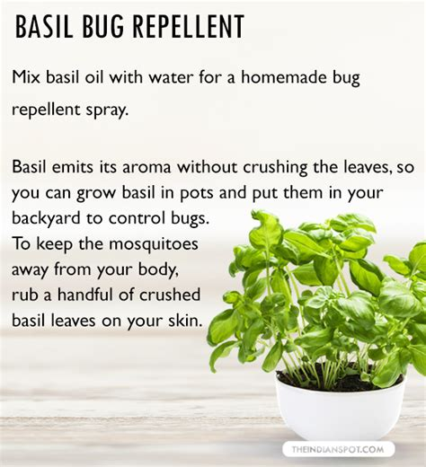 diy homemade natural nontoxic insect bug and mosquito spray