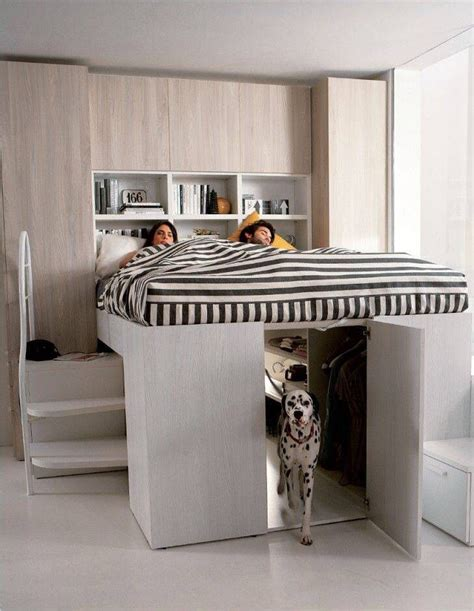 dog rooms in houses best 25 dog rooms ideas on pinterest