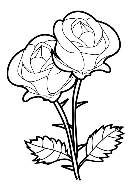 Coloring Sheet Of Rose | free printable roses coloring pages for kids