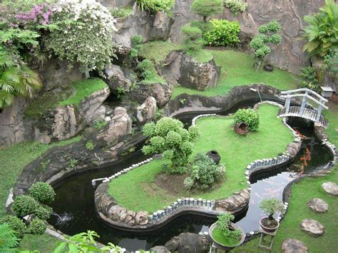 turtle ponds for backyard the 25 best ideas about turtle pond on pinterest water