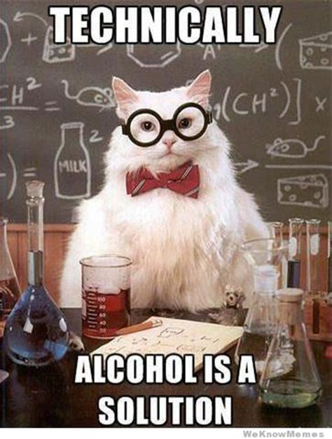 Science Cat Memes - technically alcohol is a solution chemis