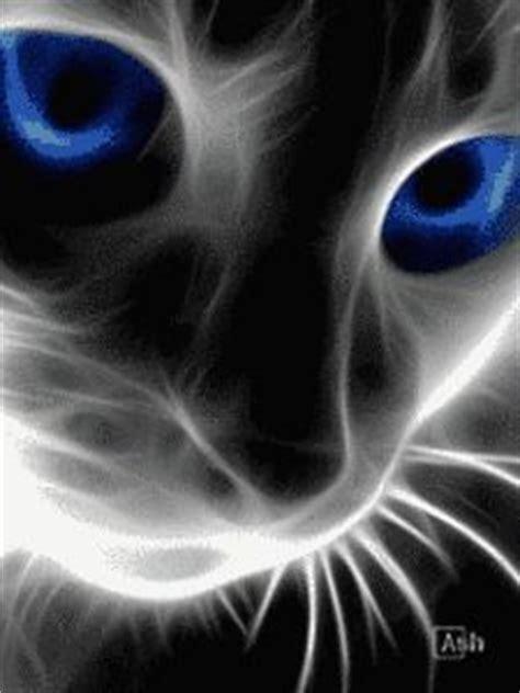 descargar imagenes para whatsapp movibles descargar imagnes para whatsapp en movimiento gato cosas