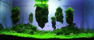 Dragon Stone Aquascape 画像 水槽 美少女フィギュア ガンプラアクアリウム 美しい Naver まとめ