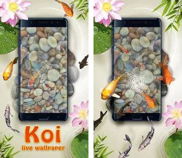 koi live wallpaper full version apk download koi pond 3d live wallpaper apk download latest version 1 2