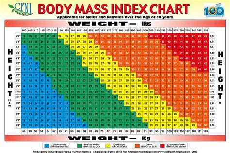 Bmi Index Table by Mass Index
