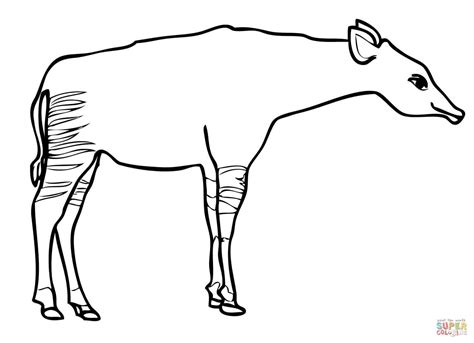 okapi giraffe coloring page free printable coloring pages