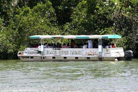 pier one montego bay boat ride black river safari eco tour
