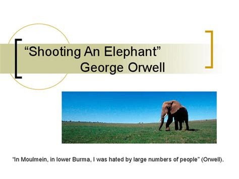 George Orwell Shooting An Elephant Essay by Shooting An Elephant Essay Pdf Proofreadingx Web Fc2